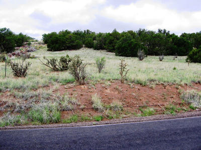 Torrance County Residential Lots & Land For Sale: 700 Lexco Road