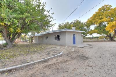 Los Lunas Single Family Home For Sale: 308 El Cerro Loop