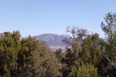Santa Fe County Residential Lots & Land For Sale: 13 Las Nietas Court