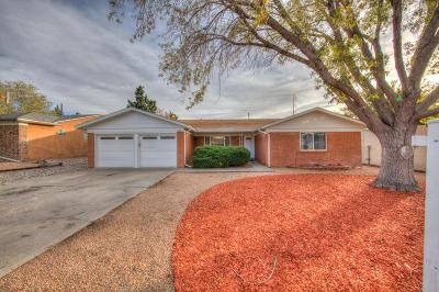 Albuquerque Single Family Home For Sale: 12216 Vienna Drive NE