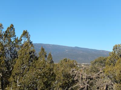 Tijeras NM Residential Lots & Land For Sale: $99,900