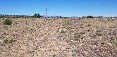 Torrance County Residential Lots & Land For Sale: 11 Silver Maple Avenue