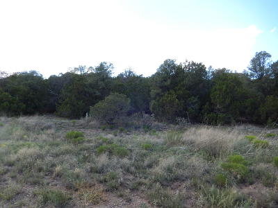 Edgewood NM Residential Lots & Land For Sale: $30,000