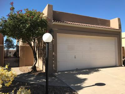 Bernalillo County Single Family Home For Sale: 2175 Black Willow Drive NE