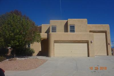 Bernalillo County Single Family Home For Sale: 8656 Animas Place NW