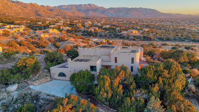 Sandia Heights Single Family Home For Sale: 203 Spring Creek Drive NE