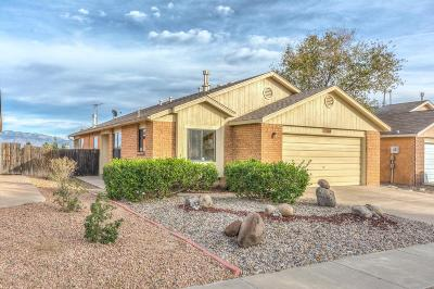 Albuquerque Single Family Home For Sale: 3416 Running Bird Court NW