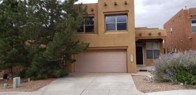 Bernalillo County Single Family Home For Sale: 6215 Goldfield Place NE
