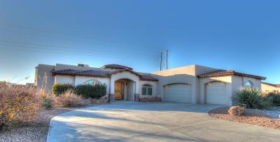 Albuquerque Single Family Home For Sale: 5613 Cinder Cone Drive NW