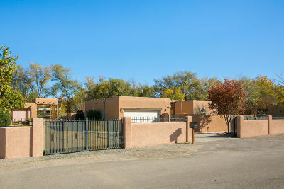 Albuquerque Single Family Home For Sale: 937 Commons North Lane