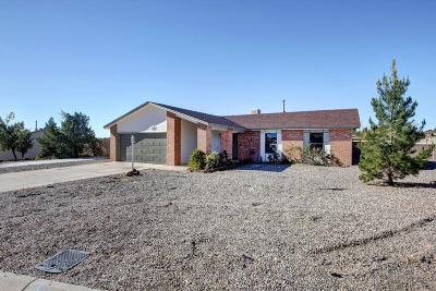 Rio Rancho Single Family Home For Sale: 349 4th Avenue NE