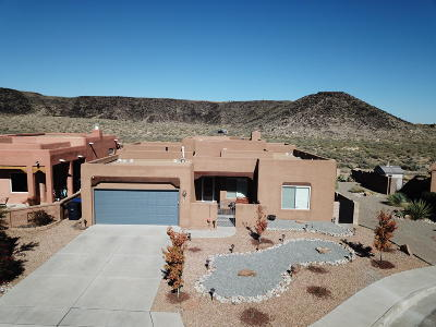 Albuquerque Single Family Home For Sale: 6405 Star Bright Road NW