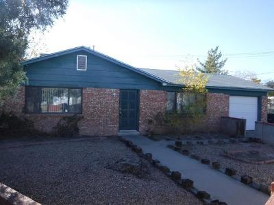 Bernalillo County Single Family Home For Sale: 505 Nuves Court NW