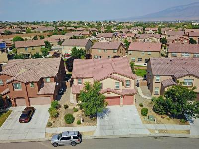 Rio Rancho Single Family Home For Sale: 39 Paseo Vista Loop NE