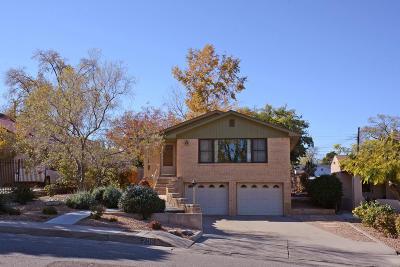 Albuquerque Single Family Home For Sale: 209 Hermosa Drive SE