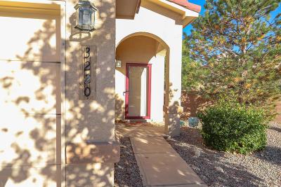Sandoval County Single Family Home For Sale: 3220 San Ildefonso Loop NE