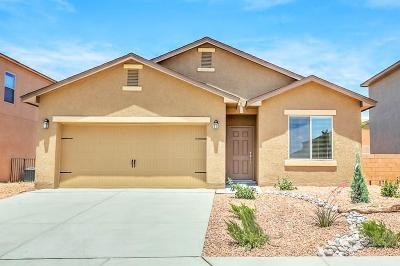 Albuquerque Single Family Home For Sale: 10012 Artemsia Avenue SW