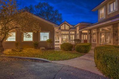 Albuquerque Single Family Home For Sale: 3023 Rio Grande Boulevard NW