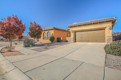 Valencia County Single Family Home For Sale: 171 Zuni River Circle SW