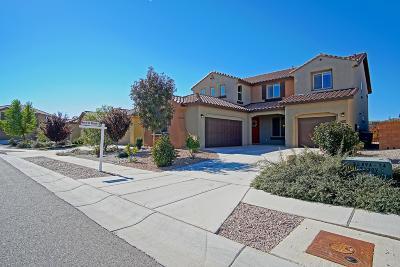Albuquerque Single Family Home For Sale: 6709 Nueva Piedra Street NW