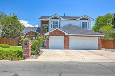Albuquerque Single Family Home For Sale: 5008 Simon Drive NW