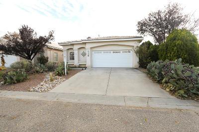 Rio Rancho Single Family Home For Sale: 3042 Copper Creek Drive