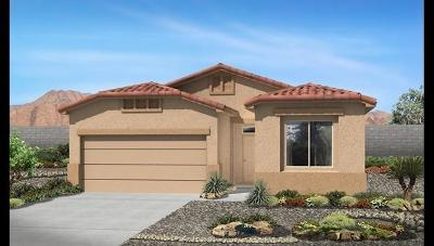 Rio Rancho Single Family Home For Sale: 1138 Grace Street NE