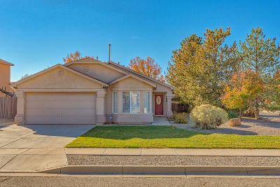 Rio Rancho Single Family Home For Sale: 822 Deming Meadows Drive NE