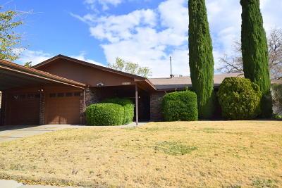 Albuquerque Single Family Home For Sale: 5300 Van Christopher Drive NE