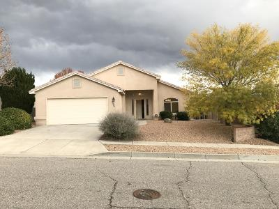 Albuquerque Single Family Home For Sale: 12500 Mountain Ridge Place NE
