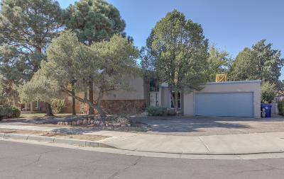 Albuquerque Single Family Home For Sale: 3305 Utah Street NE