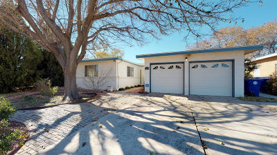 Albuquerque Single Family Home For Sale: 1209 Chama Street NE