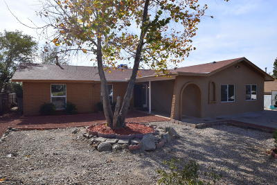 Albuquerque Single Family Home For Sale: 11704 Tracy Court NE