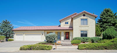 Bernalillo County Single Family Home For Sale: 13705 Vic Road NE