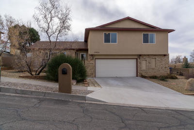 Bernalillo County Single Family Home For Sale: 13004 Antelope Dancer Trail