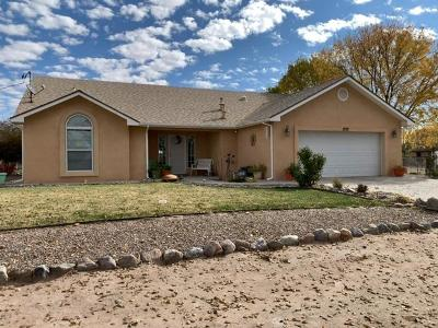 Valencia County Single Family Home For Sale: 1228 Silva Road