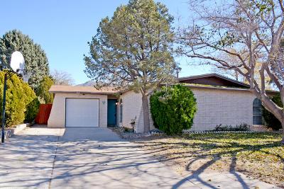 Albuquerque NM Single Family Home For Sale: $175,000