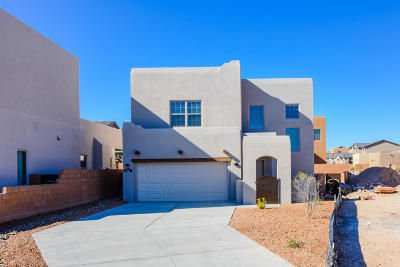Albuquerque Single Family Home For Sale: 7224 Valle Jardin Lane NW