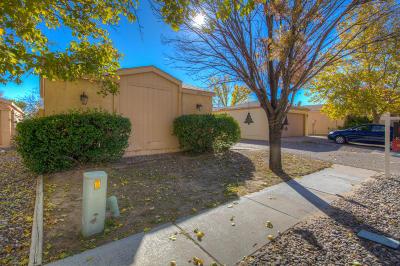 Rio Rancho Single Family Home For Sale: 1353 Rebecca Road NE