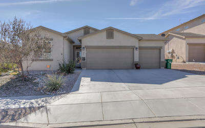 Albuquerque, Rio Rancho Single Family Home For Sale: 256 Landing Trail NE