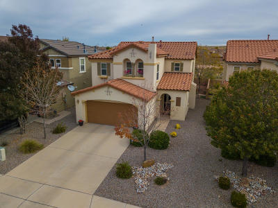 Rio Rancho Single Family Home For Sale: 3644 Clear Creek Road NE