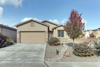 Rio Rancho Single Family Home For Sale: 1340 Blue Sky Loop NE