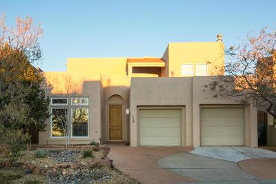 Albuquerque Single Family Home For Sale: 13243 Chaco Canyon Lane NE