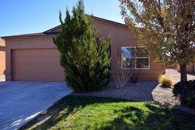 Rio Rancho Single Family Home For Sale: 1028 Desert Paintbrush Loop NE