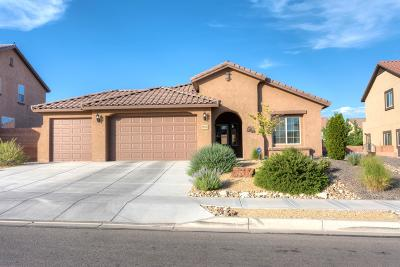 Rio Rancho Single Family Home For Sale: 3921 Las Colinas Avenue NE