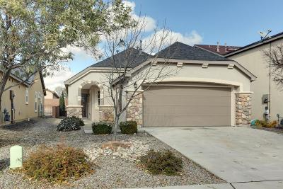 Rio Rancho Single Family Home For Sale: 1041 Spring Valley Road NE