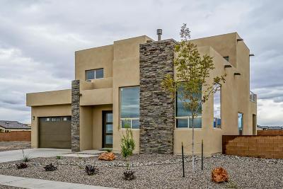 Albuquerque NM Single Family Home For Sale: $399,000