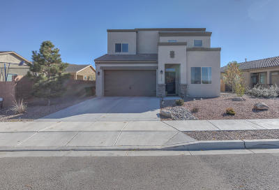 Rio Rancho Single Family Home For Sale: 1102 Picton Street NE