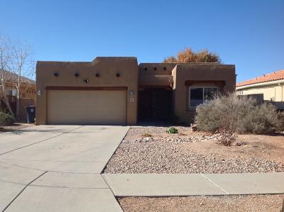 Albuquerque Single Family Home For Sale: 9015 Sunny Brook Street NE