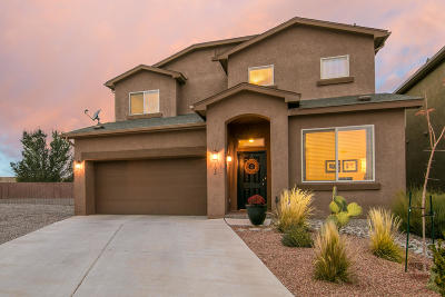 Rio Rancho Single Family Home For Sale: 902 Hunter Court NE